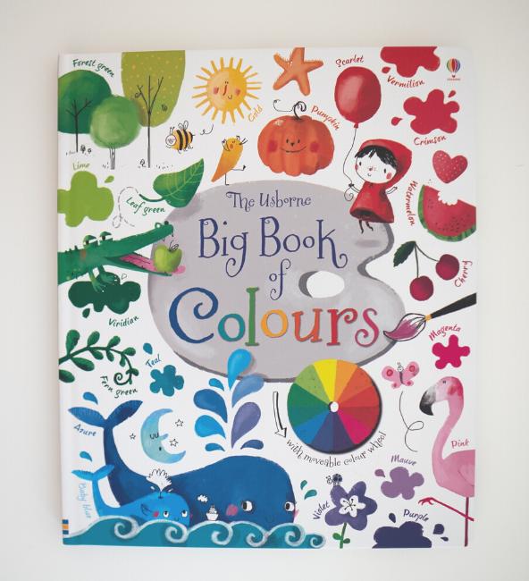 The Usborne Big Book Of Colours
